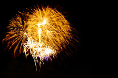 bright colors fireworks -  beautiful colorful firework isolated Stock Images