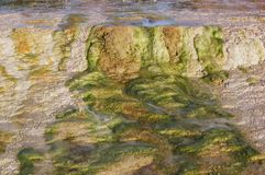 Bright colors of a geothermal pool. Royalty Free Stock Image