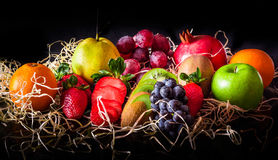 Bright colour fruits Stock Images