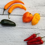 Bright colourful assorted peppers Stock Images