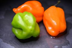 Bright colourful green and orange habanero hot peppers on table Stock Image