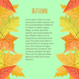 Bright colourful vertical border with autumn leaves on blue background. Stock Image