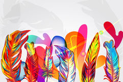 Bright composition with feathers Stock Photos