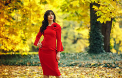 Bright contrasting portrait lady. Waist High portrait of a woman. Royalty Free Stock Photo