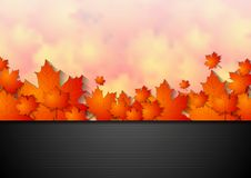Bright corporate autumn background Royalty Free Stock Photo