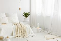 Cozy bedroom with white bedding. Bright, cozy bedroom interior with white bedding on the bed, palm plant and big window royalty free stock photos