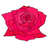 Bright crimson bud rose, isolated on white background. Doodle Flower hand drawn. Vector illustration of design, art book, textiles, print, poster, design Stock Photography