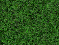 Bright curled lush green grass texture Stock Image