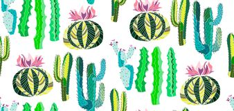 Bright cute beautiful abstract lovely mexican tropical floral herbal summer green set of a cactus paint like child vector illustra Stock Photo