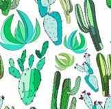 Bright cute beautiful abstract lovely mexican tropical floral herbal summer green set of a cactus paint like child vector Royalty Free Stock Images