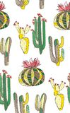 Bright cute beautiful abstract lovely mexican tropical floral herbal summer green set of a cactus paint like child vector illustra Royalty Free Stock Photography