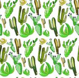 Bright cute beautiful abstract lovely mexican tropical floral herbal summer green set of a cactus paint like child vector illustra Royalty Free Stock Photo