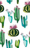 Bright cute beautiful abstract lovely mexican tropical floral herbal summer green set of a cactus paint like child vector illustra Stock Photos