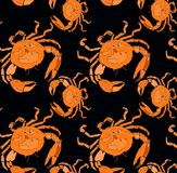 Bright cute lovely graphic summer sea tasty delicious pattern of orange crabs vector illustration Stock Photos