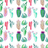 Bright cute wonderful mexican tropical floral summer green pattern of a colorful cactus with flowers vertical pattern like child p Stock Photos