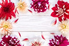 Image with dahlias. Bright dahlias on a wooden background. Copy and paste Stock Photos