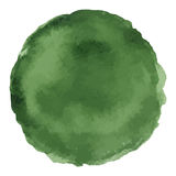 Bright dark green watercolor painted vector stain. Isolated on white background Royalty Free Stock Photos