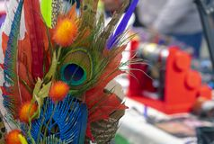 Bright decorative composition with a peacock feather in the center royalty free stock image