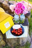 Picnic on nature. Bright and delicious picnic in nature-a healthy day Stock Photo