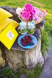 Picnic on nature. Bright and delicious picnic in nature-a healthy day Royalty Free Stock Photos