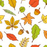 Doodle leaves seamless pattern vector Stock Image