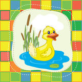 Bright duck. Bright  yellow duck on the blue lake Royalty Free Stock Images