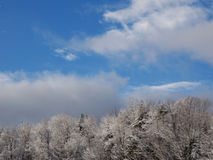 Bright early winter day in the mountains of southern New Hampshire. Blue sky, snow covered trees, white fluffy clouds, trees with no leaves Stock Photography
