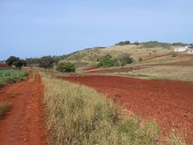 Bright Earth Colors of Countryside Landscape royalty free stock photos