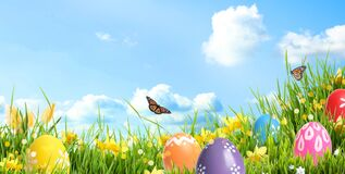 Free Bright Easter Eggs In Green Grass And Butterflies Against Sky. Banner Design Stock Images - 178550324