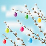 Bright eggs hang on pussy-willow branches. Contains gradient mesh elements Vector Illustration