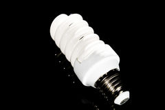 Bright energy saving fluorescent light bulb Royalty Free Stock Image