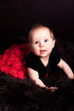 Bright eyed baby girl in lace on fur Stock Image