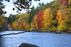 Bright fall foliage and old mill on the Farmington River, Connecticut. stock image