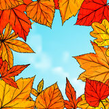 Bright fall frame with orange and red leaves Royalty Free Stock Image