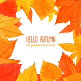 Bright fall frame with orange and red leaves Royalty Free Stock Photography