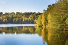Bright fall trees with their reflection in water Royalty Free Stock Images