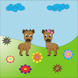 Bright fawns Royalty Free Stock Images