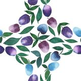 Bright fine circle of plums seamless pattern watercolor hand sketch Royalty Free Stock Photography