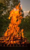 Bright fire. BBQ cooking outdoors Stock Image