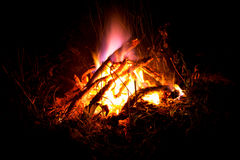 Bright fire on a black background. stock photo