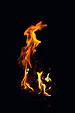 Bright fire burning in the dark Stock Photo
