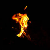 Bright fire burning in the dark Royalty Free Stock Photography