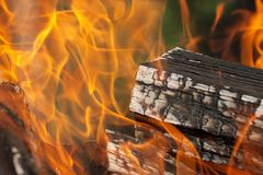 Bright fire and burning firewood royalty free stock photography