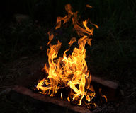 Bright fire burning at night Royalty Free Stock Photo