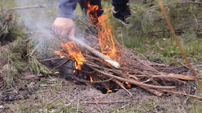 A bright fire burns on the ground. The tongues of fire are breaking ever harder. Branches of bushes burn in flames. Men and women sit at fire and bushes shaking stock video footage