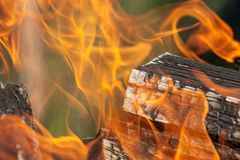 Bright fire close up royalty free stock photography