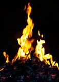 Bright fire in a fireplace Royalty Free Stock Image