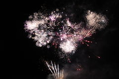 Bright Firework. Royalty Free Stock Photography