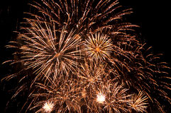 Bright fireworks in the night sky Royalty Free Stock Photos