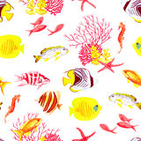 Bright fishes and algae seamless vector pattern. Bright fishes and algae watercolor seamless vector pattern Stock Photos
